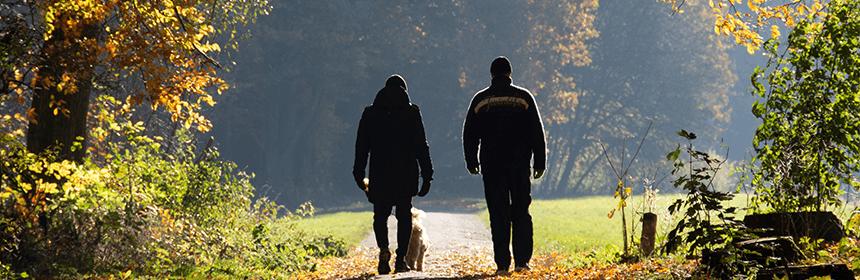 Fit blijven voor ouderen - Lekker Blijven Wonen